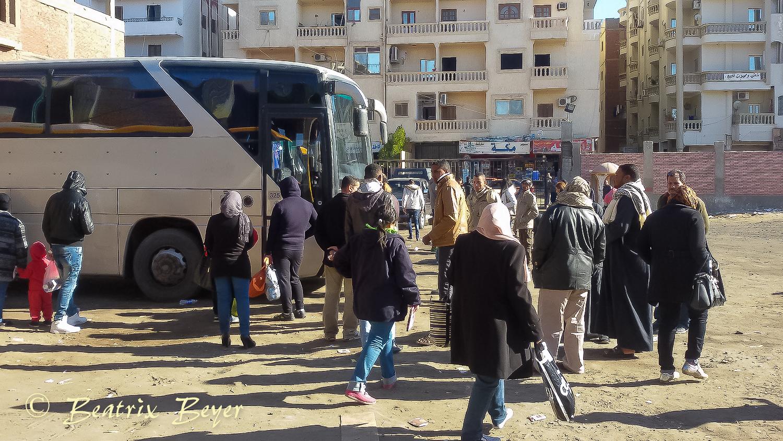 Wieder goBus – diesmal nach Luxor