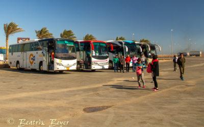 Mit goBus allein nach Kairo