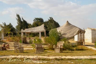 im Dorf Tunis
