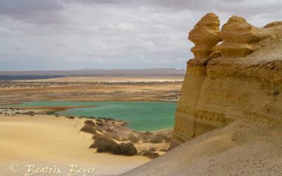 Wandern in der Wüste – Wadi Rayan National Park