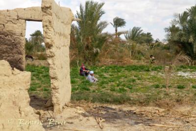 letzte Eindrücke in Tunis